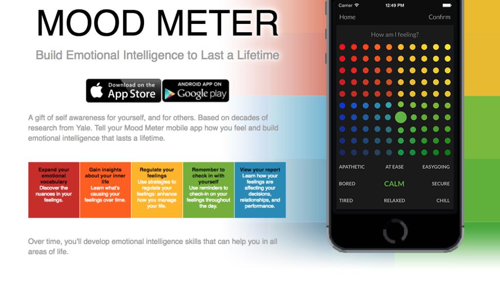Mood Meter Screen shot